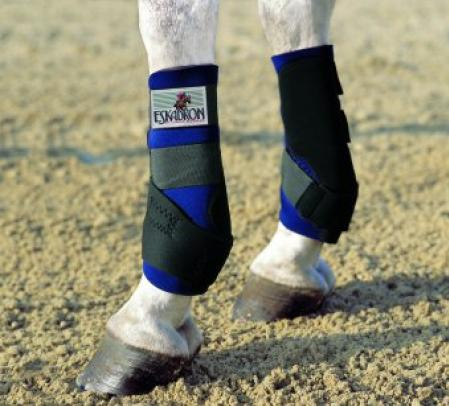 Horse boots, Training tendon boots front - Pro Active 11