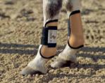 Tendon Protection Boots - pony